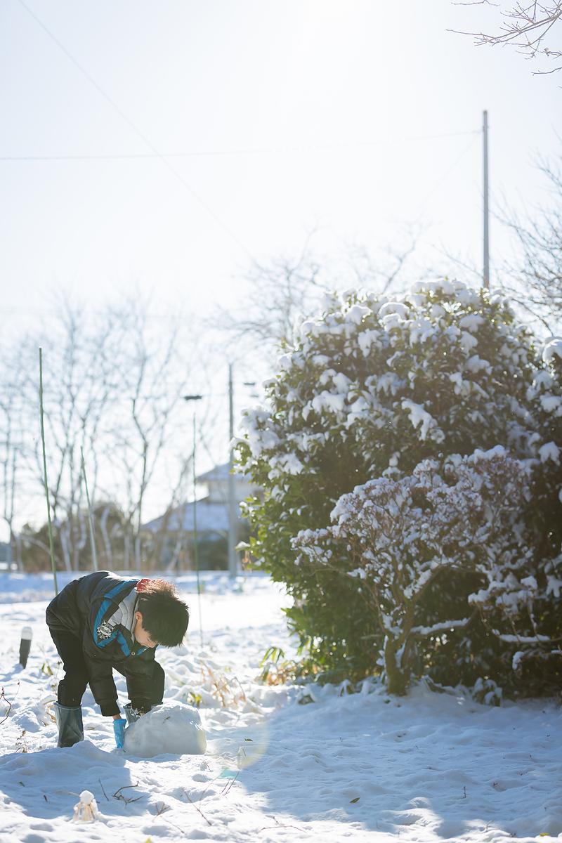 雪,グレムリン,帰省