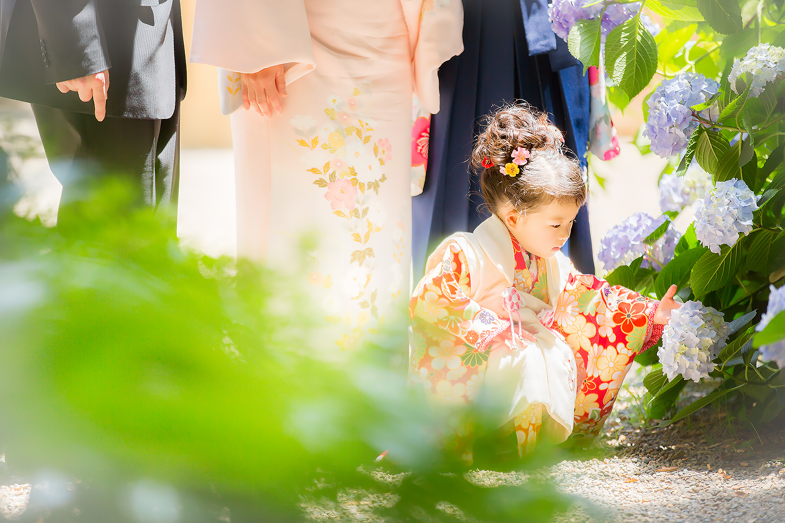 七五三,3歳,着物,姉妹,神社,ロケ,外出,お参り,家族写真