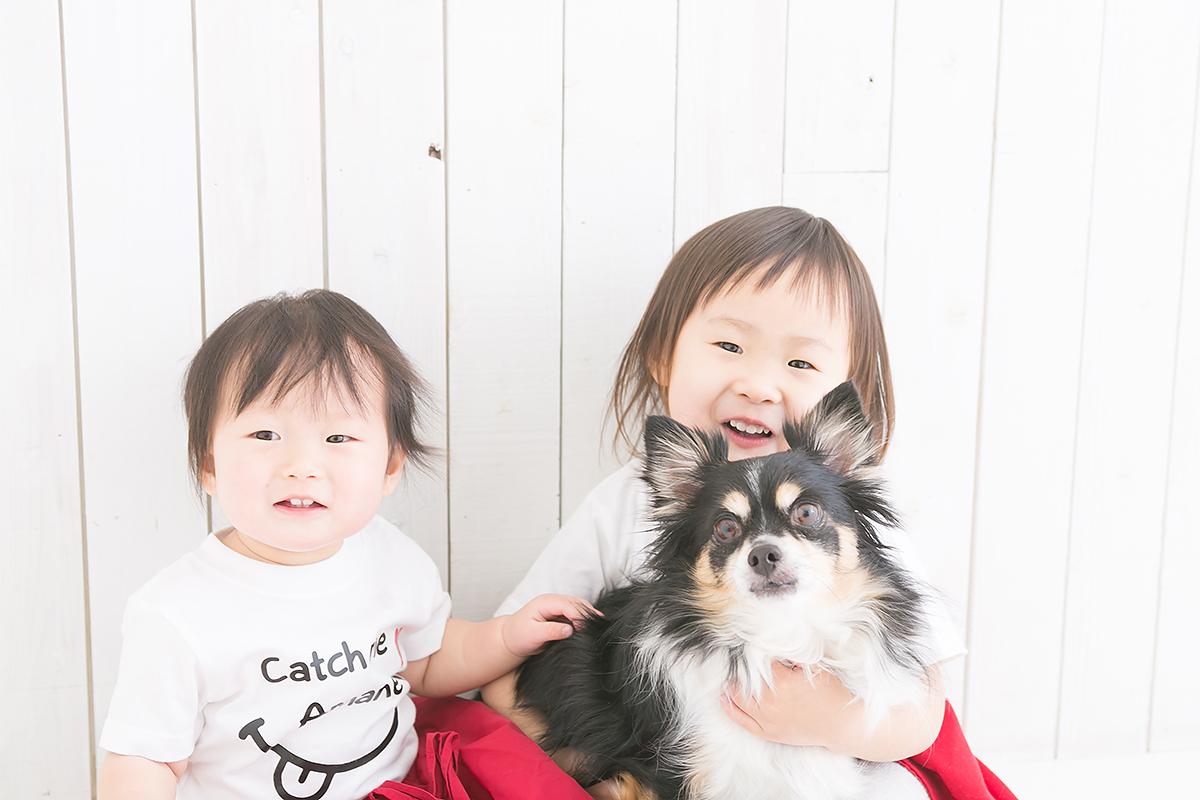 一歳記念 赤ちゃん 姉妹 わんちゃん 犬