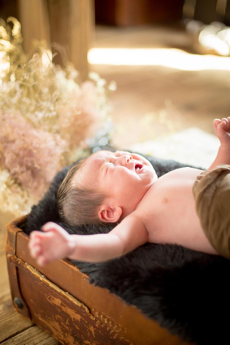 赤ちゃん,新生児、NewBorn