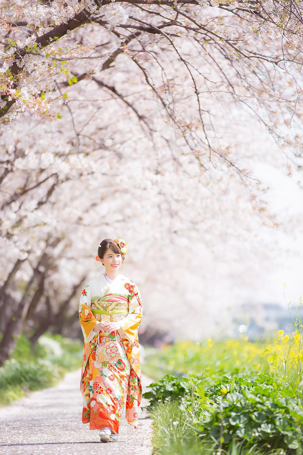 成人式,成人式前撮り,成人振袖,振袖,前撮り,桜,桜ロケ