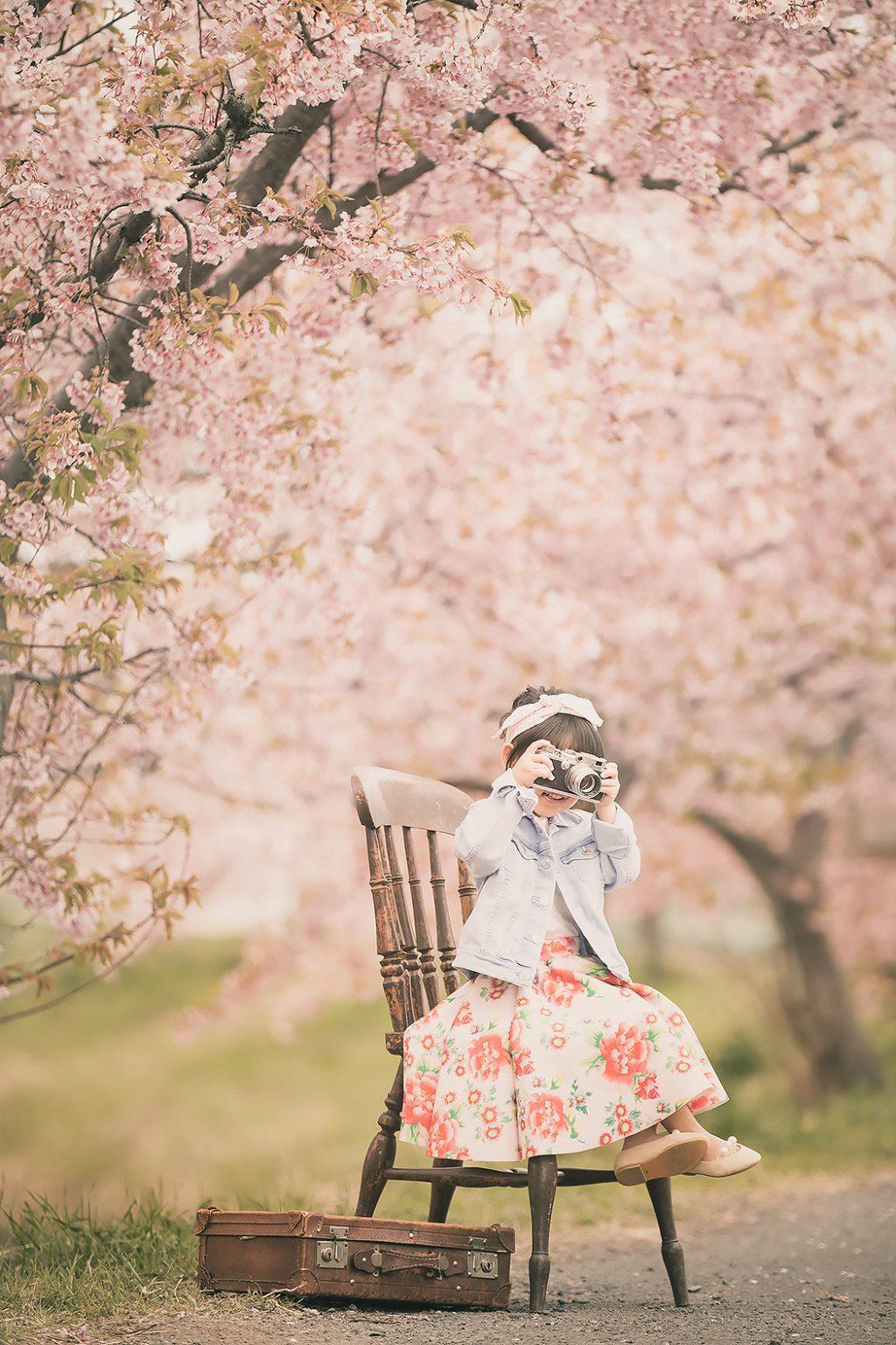 七五三,桜,ロケーション,カジュアル服