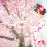 成人振袖,前撮り,桜ロケ